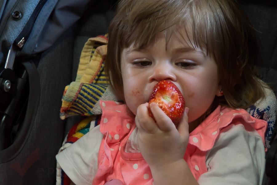 6-Erdbeerfest-057
